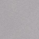 7961 - Seagull